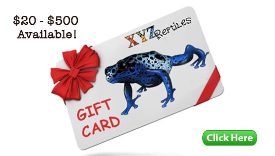 xyzReptiles Gift Card