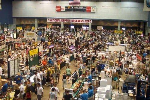 NRBE Expo