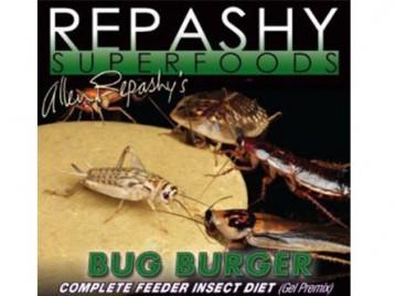 bug burger cricket food