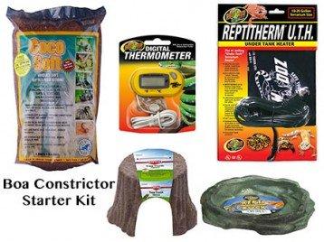 Boa Contrictor Snake Starter kit