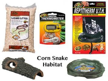 Corn Snake Habitat