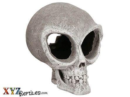 alien skull snake hide