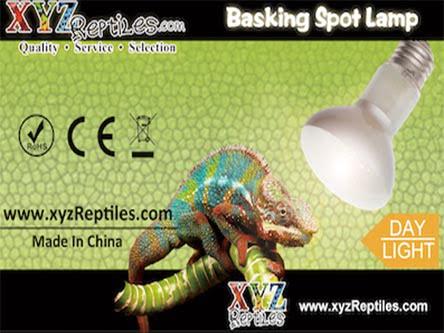 75 watt reptile heat lamp