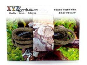 flexible reptile climbing vine