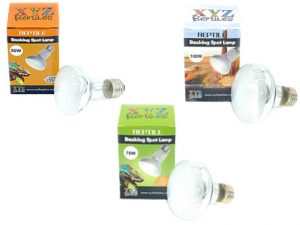 reptile heat bulbs
