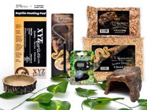 corn snake starter kit